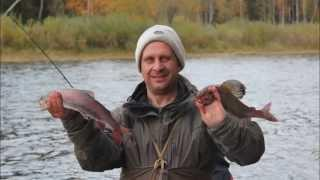 Рыбалка на р. Чапа (приток Вельмо)