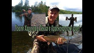 Рыбалка на Хариуса и Ленка в Красноярском крае!