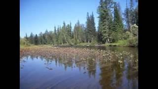 сухой Пит 2016(на воде)
