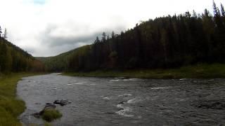 устье реки Каменка, правый приток реки Большой Пит